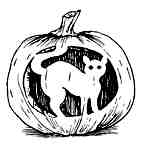 Carved cat pumpkin