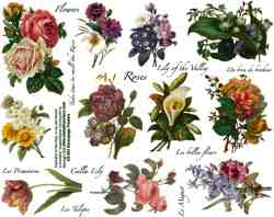 Decoupage Flowers Collage Sheet