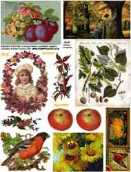 Couleurs d'Automne Collage Sheet