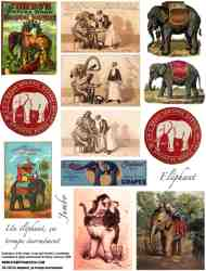 Un Elephant Collage Sheet
