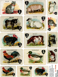 Farm Animals Collage Sheet
