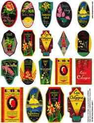 Perfume Labels 1 Collage Sheet
